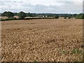 NZ0669 : Arable land near Coldside Farm by Mike Quinn