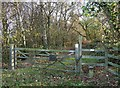 SO6787 : Public Entrance to Copse, Shropshire by Roger  Kidd