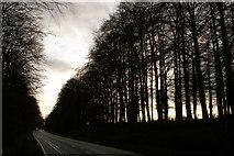 SU4726 : Otterbourne Road by Jim Champion