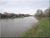 TQ1667 : Living by the River Thames by Bob Parkes