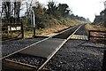 N4257 : Railway crossing by kevin higgins