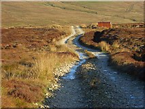 NY6740 : Track and small hut above Aglionby Beck by Andrew Smith