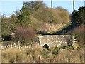 NY9875 : Bridge over Hallington Burn by Mike Quinn