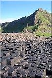 C9444 : Giant's Causeway by Sandra White