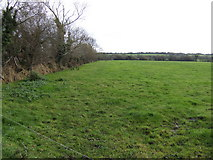 T2369 : Pasture land by Jonathan Billinger