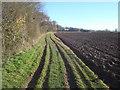 SO7434 : Footpath to Toney's Farm by Trevor Rickard