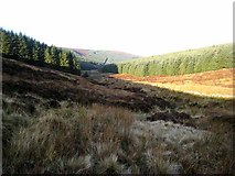 NX9461 : The valley of the Glen Burn by Oliver Dixon