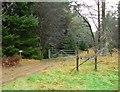 NN8161 : Path to Loch Bhac by Rob Burke