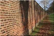 NZ1758 : Wall, Gibside by Mick Garratt