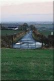 NZ1858 : Lane to Gibside Hillhead by Mick Garratt