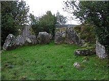 H5647 : Carnagat Portal Tomb by Kenneth  Allen