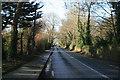 O2249 : Country road looking west , near Newbridge Demesne, Donabate, Co. Dublin. by Colm O hAonghusa