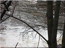 NS5666 : River Kelvin by Richard Webb