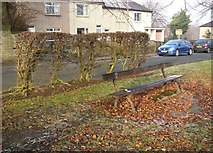 SE1321 : Seat and hedge, Crowtrees Lane, Rastrick by Humphrey Bolton
