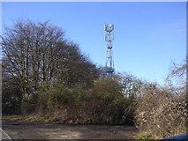 SP4121 : Communications Mast, Glympton by Bill Johnson