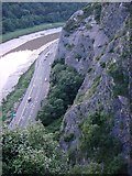 ST5673 : River Avon below cliffs above Clifton Suspension Bridge by Tom Jolliffe