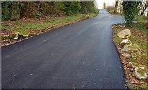 J3996 : Lane to Glenoe Glen (2) by Albert Bridge