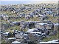 SD9169 : Limestone Pavement by Roger Nunn