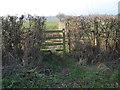 SO8143 : Footpath junction near Tickeridge Farm by Trevor Rickard