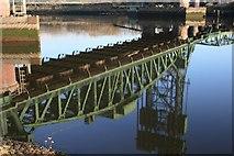NZ4719 : River Tees by Mick Garratt