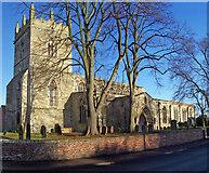 TA0322 : Church of St. Mary, Barton Upon Humber by David Wright