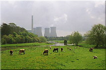 SK0418 : Rugeley - River Trent meadows by Dave Bevis