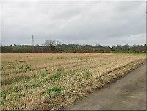 TR3156 : View across farmland towards Woodnesborough by Nick Smith