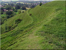 ST8412 : Slipped earthworks, Hambledon Hill by Jim Champion