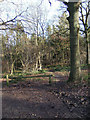 SO7379 : Footpath into Wyre Forest from small car park off B4194 by P L Chadwick