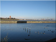 SJ5183 : Across the Mersey at Runcorn towards Widnes by Sue Adair