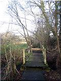 TG1730 : Footbridge at the end of boardwalk by Evelyn Simak