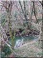 SS5217 : Woolleigh Brook by Derek Harper