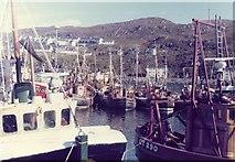 NM6797 : Mallaig Harbour by Alan Heardman