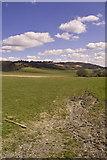 TQ5959 : Fields in Wrotham by dennis smith