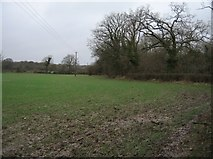 SU7251 : Sodden farmland by Sandy B