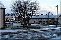J2967 : Rowan Drive by Wilson Adams