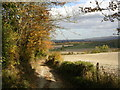 SP7701 : Along the Midshires Way towards Bledlow by Mark Percy