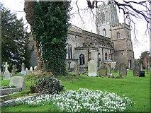ST6834 : St Mary's Church, Bruton by Maigheach-gheal