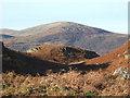 SD2091 : Bracken covered hillsides above Stonestar by Andrew Hill