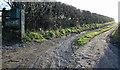 SJ2602 : Mud On The Road by J Scott