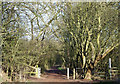 SO8696 : South Staffordshire Railway Walk, Lower Penn by Roger  Kidd