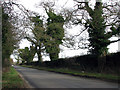 TG1616 : Heading north on Taverham Road by Evelyn Simak