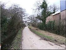 SJ4170 : Bridleway through Chester Zoo by BrianPritchard
