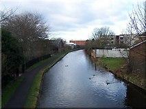 SJ9400 : Wyrley And Essington Canal, Wednesfield by Geoff Pick