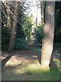 SZ0791 : Bournemouth Gardens: lower footpath to Branksome Wood Road by Chris Downer
