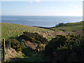 NZ9309 : Footpath to the cliffs at Widdy Head by Stephen McCulloch
