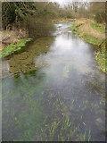 SU7251 : River Whitewater by Colin Smith