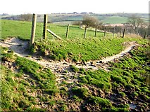TF3565 : Edge of The Wolds, Old Bolingbroke by Dave Hitchborne