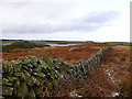 NX2953 : Castle Loch from the south by David Baird