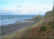 NS2109 : Barwhin Point, near Maidens by Mary and Angus Hogg